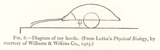 Toy Beetle
