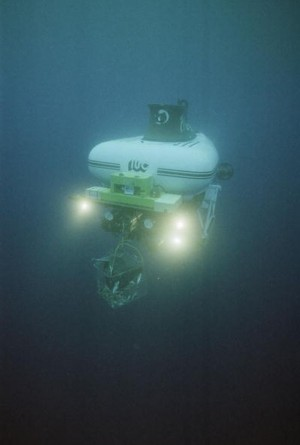 "The ""Pisces VI"" submersible holds a bait cage to attract sha"