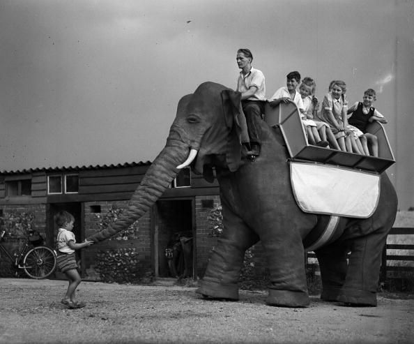 Elephant getty3066234 x640 1949 50   Mechanical Elephant   Frank Stuart (British)