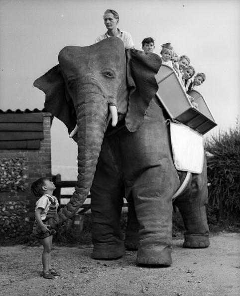 Elephant getty3066237 x640 1949 50   Mechanical Elephant   Frank Stuart (British)