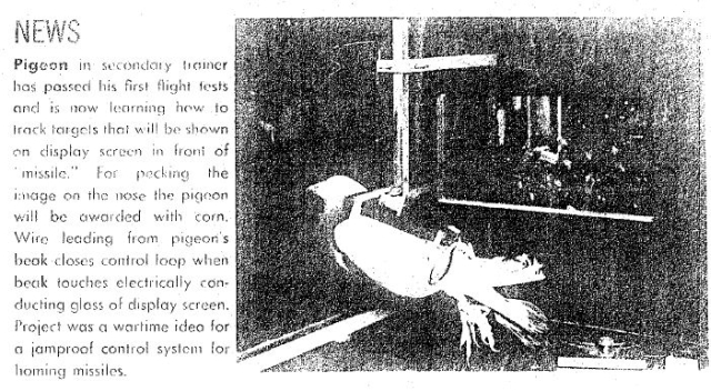 Orcon ed 1959 0 x640 1940   Project Pigeon (1948   Project Orcon)   B.F. Skinner (American)