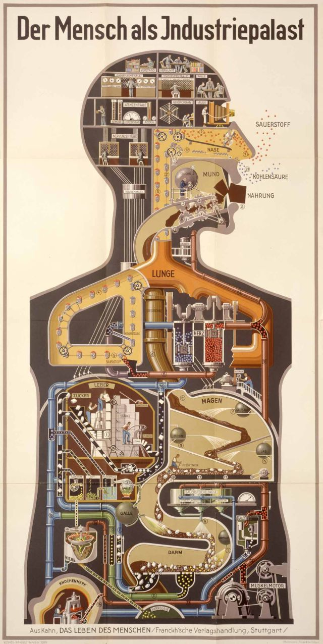 fritz kahn 1930 poster x640 1926   Der Mensch als Industriepalast (Man as Industrial Palace)   Fritz Kahn (German Jew)